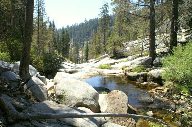 StonyCreekDorstCampSequoia
